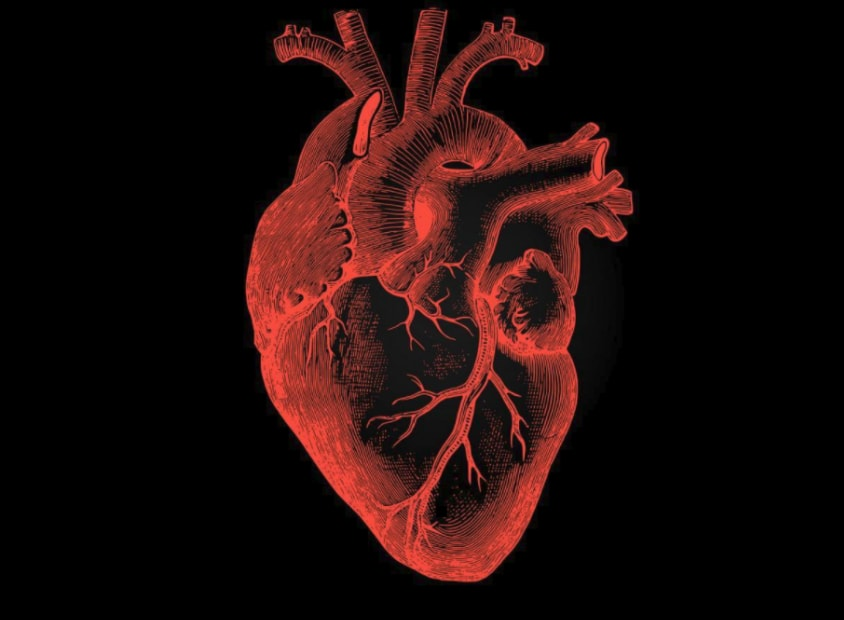 Osteopathy's Role in the Management of Heart Disease